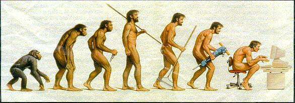 evolutionofmanfromchimptocomputer1.jpg